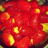 Frutti deliziosi Immagini Stock