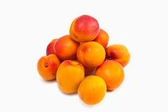 Frutti dell'albicocca Fotografie Stock Libere da Diritti