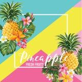 Frutti dell'ananas ed insegna tropicale di estate dei fiori, fondo grafico, invito floreale esotico, aletta di filatoio o carta illustrazione vettoriale
