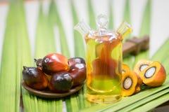 Frutti dell'olio di palma fotografie stock