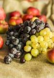 Frutti dell'uva, del melograno e della mela di autunno sul fondo della lana Fotografie Stock Libere da Diritti