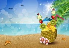 Frutti della bevanda in ananas Fotografia Stock