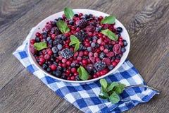 Frutti della foresta e menta verde Fotografia Stock