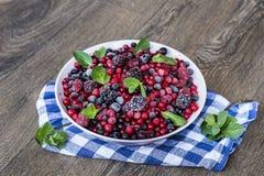 Frutti della foresta e menta verde Fotografia Stock Libera da Diritti