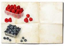 Frutti della foresta su vecchia carta Fotografia Stock Libera da Diritti