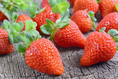 Frutti della fragola Fotografia Stock