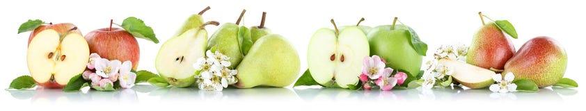 Frutti della frutta delle pere delle mele della raccolta della pera e di Apple isolati sopra Fotografia Stock
