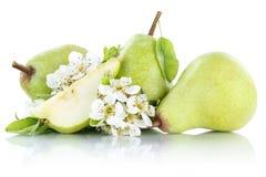Frutti della frutta di verde della pera delle pere isolati su bianco Fotografia Stock