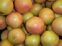 frutti della frutta fresca del pompelmo di colore flavovirent di un podeza per la vitamina di salute, succo, veretarianets fotografie stock libere da diritti