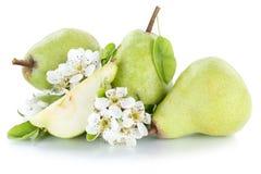 Frutti della frutta fresca di verde della pera delle pere isolati su bianco Fotografia Stock