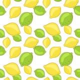 Frutti della limetta e del limone verde su fondo bianco Fotografie Stock