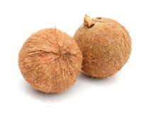 Frutti della noce di cocco sopra le foglie fotografia stock