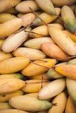 Frutti della passione gialli della banana, fine sulla foto Fotografie Stock