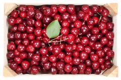 Frutti delle ciliege in scatola di legno Immagine Stock
