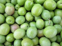 Frutti delle olive Fotografia Stock