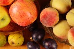 Frutti di autunno Immagine Stock