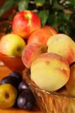 Frutti di autunno Fotografie Stock Libere da Diritti