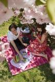 Frutti di cibo delle coppie sul picnic di estate Fotografia Stock