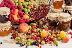 Frutti di estate e bacche - rossi, uva passa in bianco e nero, raspb fotografie stock