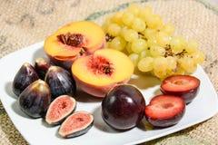 Frutti di inverno per salute Immagine Stock Libera da Diritti