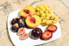 Frutti di inverno per salute Fotografie Stock Libere da Diritti