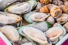 Frutti di mare Immagini Stock Libere da Diritti