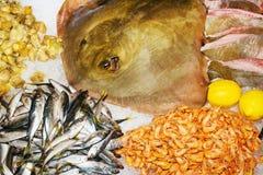 Frutti di mare crudi freschi con i limoni su ghiaccio immagine stock libera da diritti