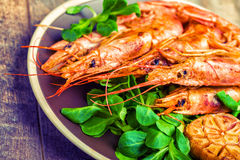 Frutti di mare del gamberetto con i rosmarini e l'aglio del limone Fotografia Stock