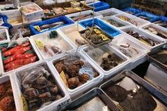 Frutti di mare del Giappone Fotografia Stock