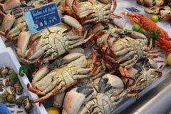 Frutti di mare della Francia Fotografia Stock Libera da Diritti