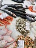 Frutti di mare e pesce congelati su ghiaccio Immagine Stock Libera da Diritti