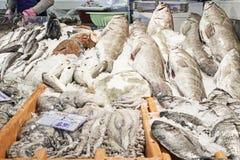 Frutti di mare e vendita Fotografie Stock Libere da Diritti