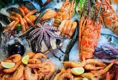 Frutti di mare freschi Immagine Stock