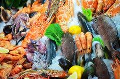 Frutti di mare freschi Fotografia Stock