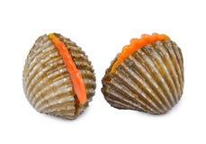 Frutti di mare freschi dei cuori edule isolati su bianco Immagini Stock