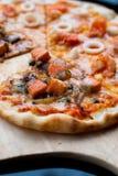 Frutti di mare mezzo Salmon Pizza immagine stock