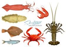 Frutti di mare nello stile del fumetto icone Illustrazioni di vettore Metta il calamaro, la seppia, il granchio, il gamberetto, i Immagini Stock