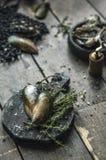 Frutti di mare Ostriche fresche, cozze sui bordi di legno fotografia stock libera da diritti