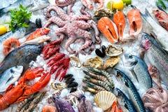 Frutti di mare su ghiaccio Fotografia Stock