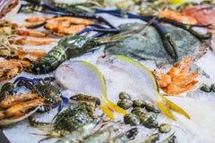 Frutti di mare su ghiaccio al mercato ittico, gamberetto del pesce di mare, salmone fotografie stock