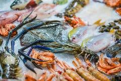 Frutti di mare su ghiaccio al mercato ittico, pesce di mare, granchio, gamberetto, aragosta immagine stock libera da diritti