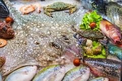 Frutti di mare su ghiaccio al mercato ittico, pesce di mare, granchio, rampa immagini stock