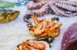 Frutti di mare su ghiaccio al mercato ittico, polipo, gamberetto, tonno immagini stock libere da diritti
