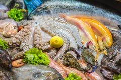 Frutti di mare su ghiaccio al mercato ittico, polipo, granchio, gamberetto immagini stock libere da diritti