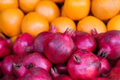 Frutti differenti Immagine Stock Libera da Diritti