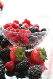 Frutti e bacche fotografie stock