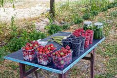 Frutti e bacche delle verdure nei piatti sulla tavola, sul mercato Fotografia Stock Libera da Diritti
