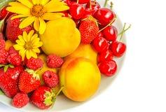 Frutti e bacche di estate fotografia stock libera da diritti