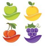 Frutti e bacche stilizzati freschi Fotografia Stock