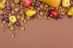 Frutti e dadi di autunno su fondo marrone con lo spazio della copia Fotografia Stock Libera da Diritti